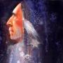 shaman13