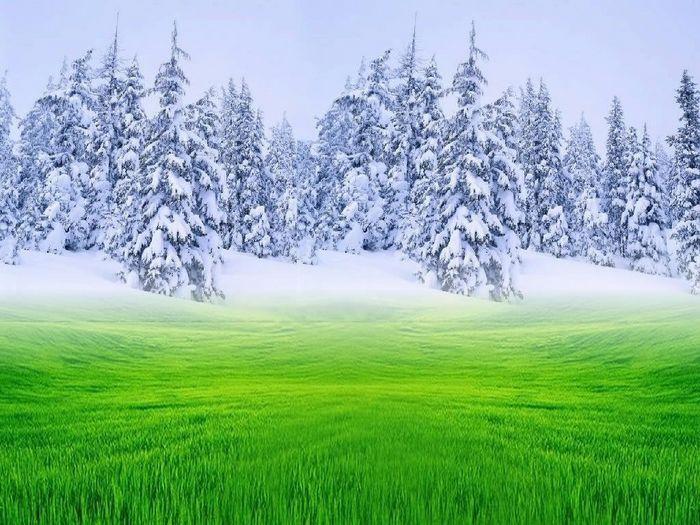 Картинки о зиме и лете